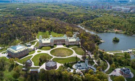 Городской питомник появится в парке Царицыно в Москве