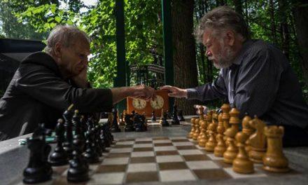 «Охлаждающую лавочку» установят в московском парке «Сокольники»