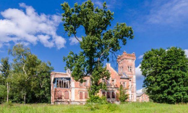 Новгородские власти выставят дворянские усадьбы на продажу за 1 рубль